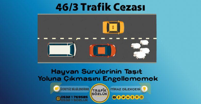 46/3 trafik cezası