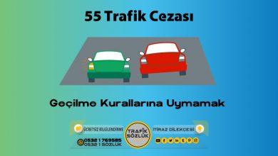 Photo of 55 trafik cezası