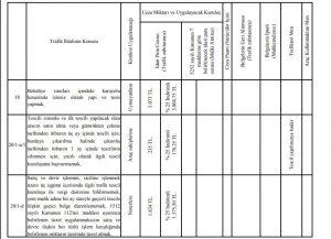 2019 trafik ceza rehberi pdf egm